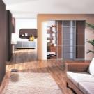 Шкафы купе в интерьере гостиной фото
