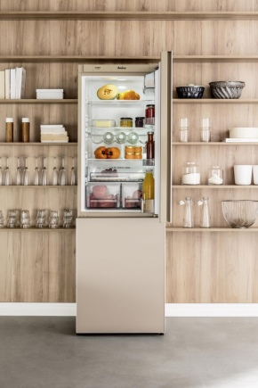 Холодильник Hansa