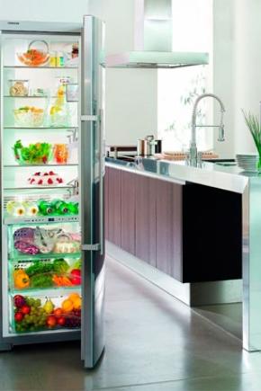 Холодильники без морозильной камеры