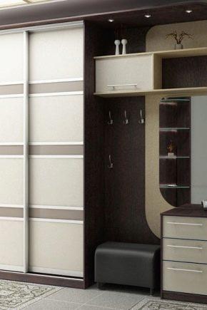 шкафы в прихожую 46 фото идеи дизайна встраиваемых моделей