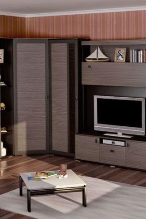угловые стенки в гостиную 42 фото мини стенка под телевизор со