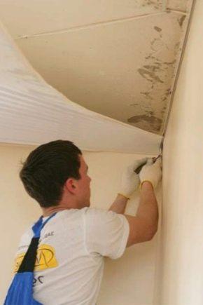 Самое эффективное средство от тараканов в домашних условиях 898