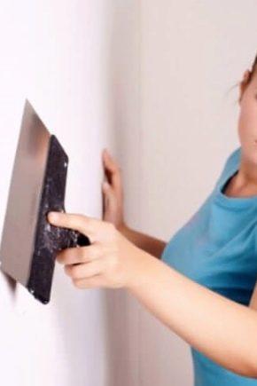 Правила шпаклевки стен под покраску