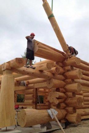 Как самостоятельно построить баню из оцилиндрованного бревна?