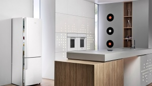 "Двухкамерный холодильник ""Бирюса"""