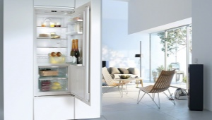 Лучшие однокамерные холодильники