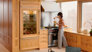 Холодильники со стеклянной дверью