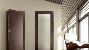 Двери Kapelli