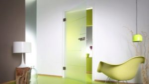 Маятниковые двери в современном интерьере