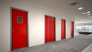 Разновидности противопожарных металлических дверей