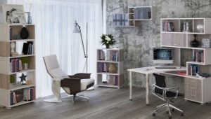 Выбираем письменный стол со стеллажом