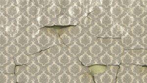 Средства для снятия обоев со стен