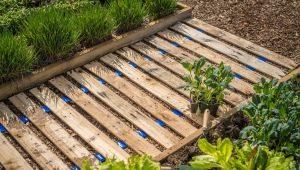 Как сделать садовые дорожки из подручных материалов самостоятельно?