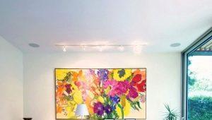 Картины в интерьере гостиной: тонкости декора стен