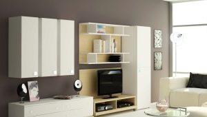 Корпусная мебель для гостиной: красивые варианты в интерьере