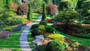 Ландшафтный дизайн: особенности процесса озеленения
