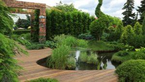 Ландшафтный дизайн: тонкости оформления дачного участка площадью 5 соток