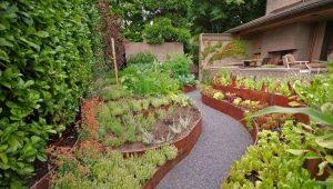 Тонкости дизайна сада и огорода в частном доме