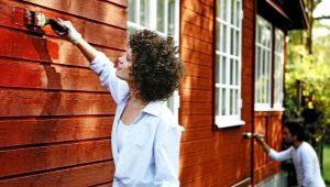 Как выбрать фасадную морозостойкую краску для наружных работ?