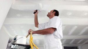 Какая краска для потолка лучше?