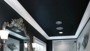 Черные натяжные потолки: особенности применения в интерьере