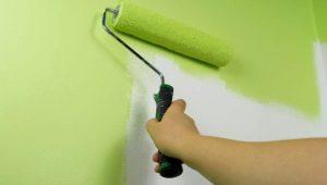 Покраска гипсокартона: выбор краски и порядок работ