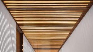 Потолки из деревянных реек: виды и особенности конструкций