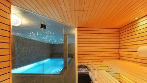 Проект бани с бассейном: примеры оформления