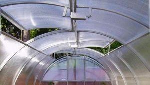 Теплицы с открывающейся крышей: особенности и виды
