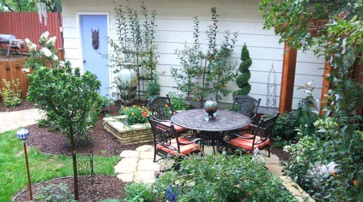 Как создать красивый дизайн садового участка площадью 6 соток?