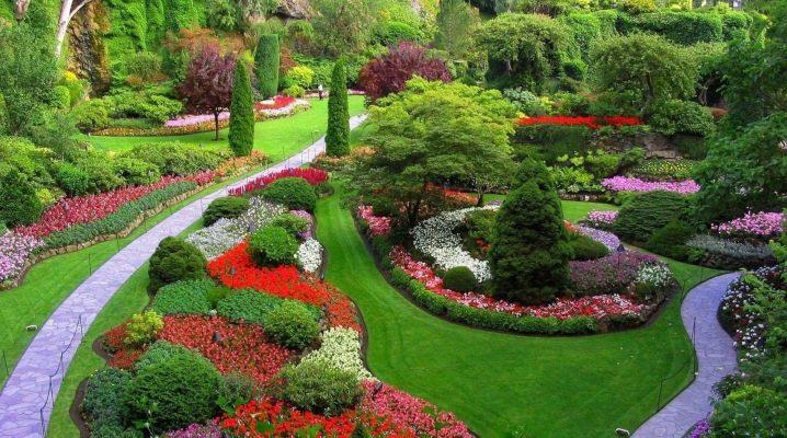Миксбордеры: красивые варианты оформления ландшафтного дизайна