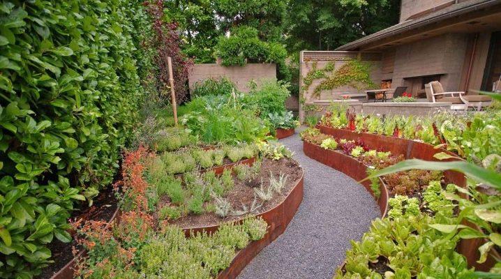 Дачный сад и огород фото дизайн