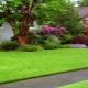Все тонкости выбора и укладки искусственной травы на даче