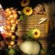 Плетеные заборы: преимущества и недостатки