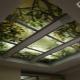 Стеклянные потолки: разновидности и тонкости выбора