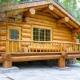 Баня из кедра: выбор древесины