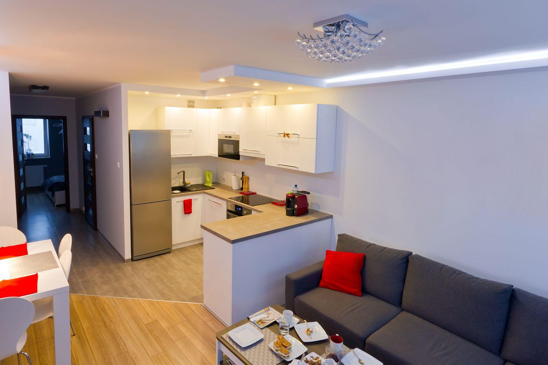 кухня студия в маленькой квартире дизайн фото