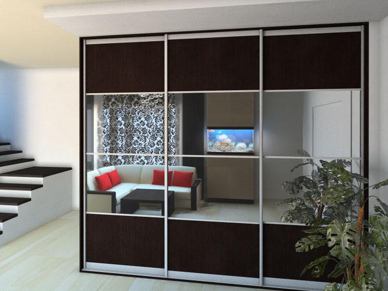 Зеркальные двери-купе для гардеробной (36 фото): распашные м.