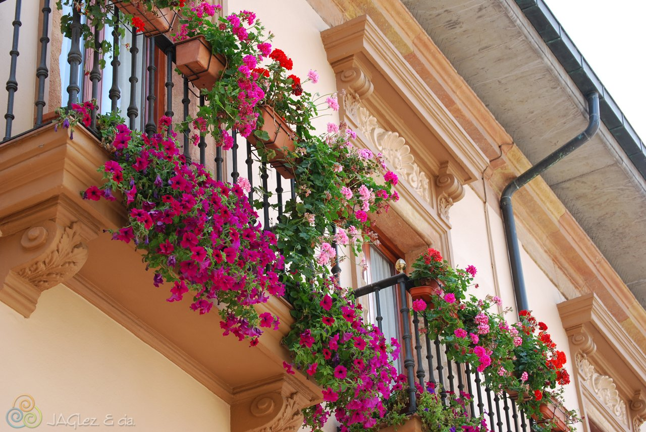 Цветочный балкон фото. - дизайн маленьких лоджий - каталог с.