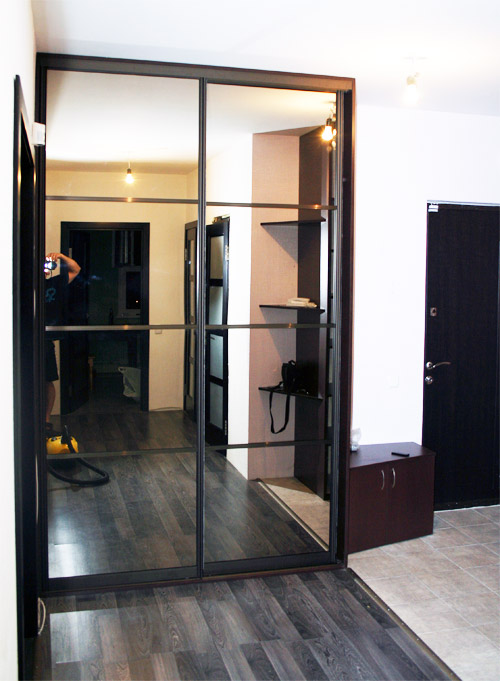 Шкаф-купе в прихожую с зеркалом (53 фото): белый зеркальный .