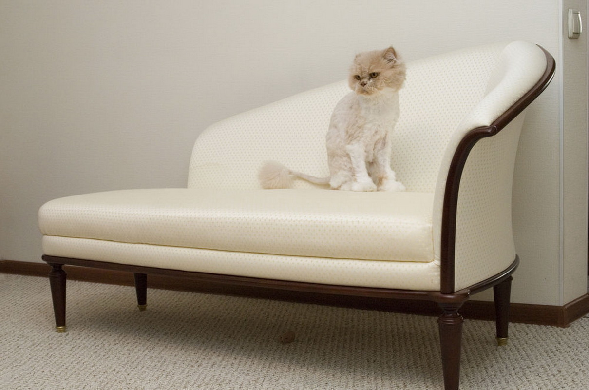 диванчик в прихожую 30 фото диван в современном стиле с местом