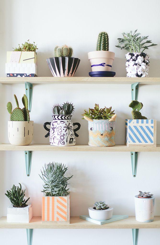 Идеи для домашних цветов своими руками 48