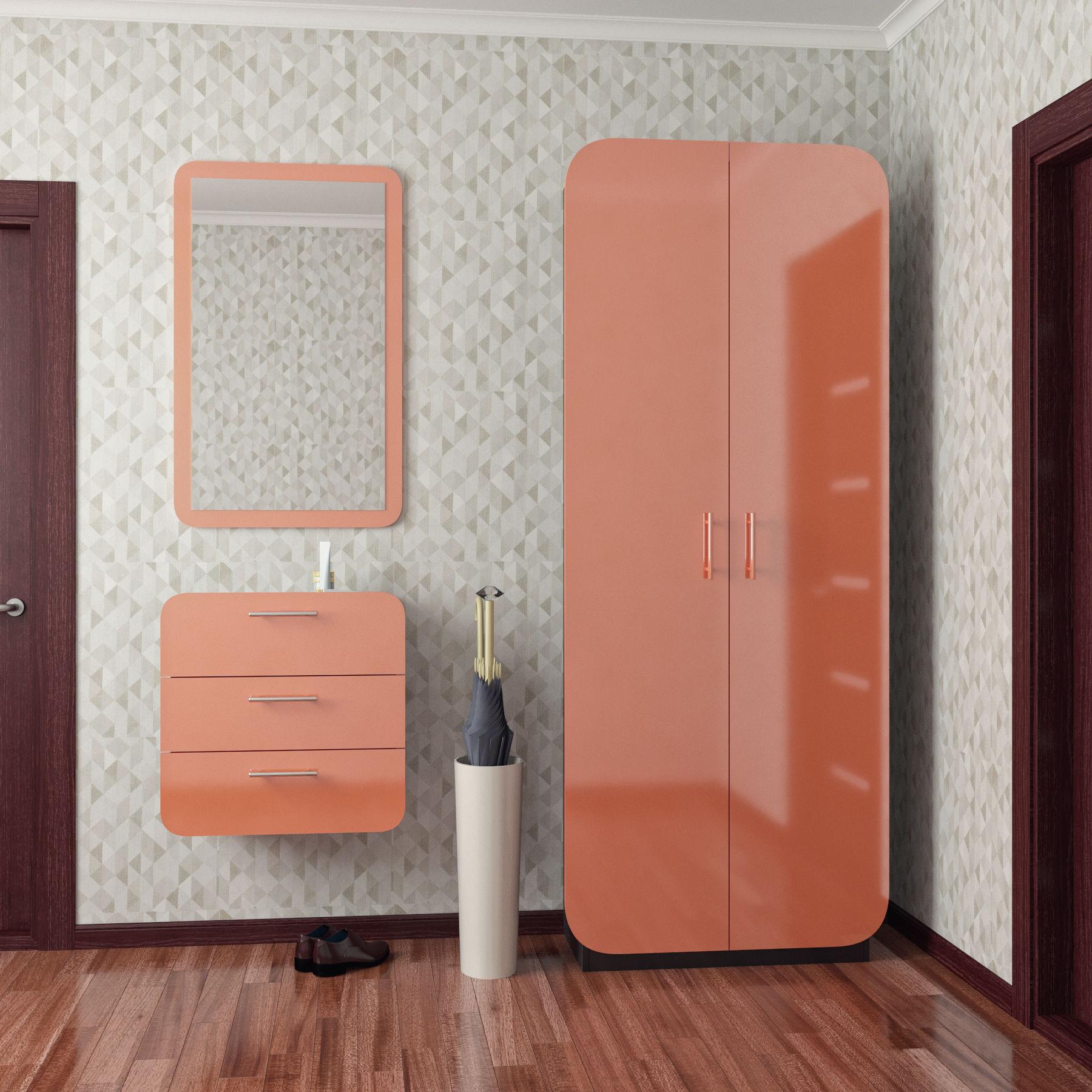 Навесные шкафы в прихожую (22 фото): подвесные шкафчики с зе.