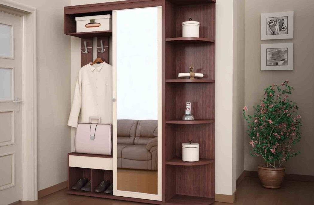узкий шкаф в прихожую 53 фото длинные модели для коридора