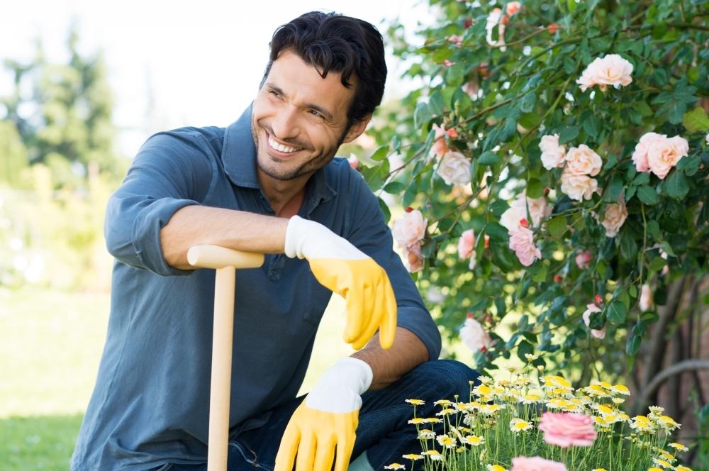 Садовник и сочн хозяйка