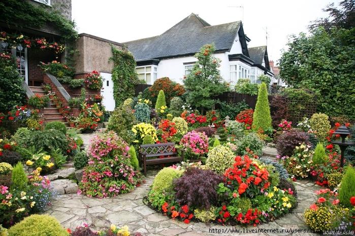 Цветники и клумбы на даче: сажаем растения, цветущие все лето