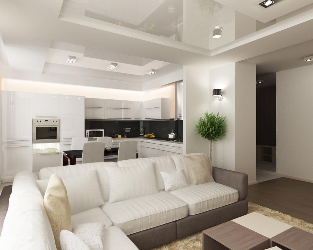 Интерьер гостиных совмещенных с кухней фото