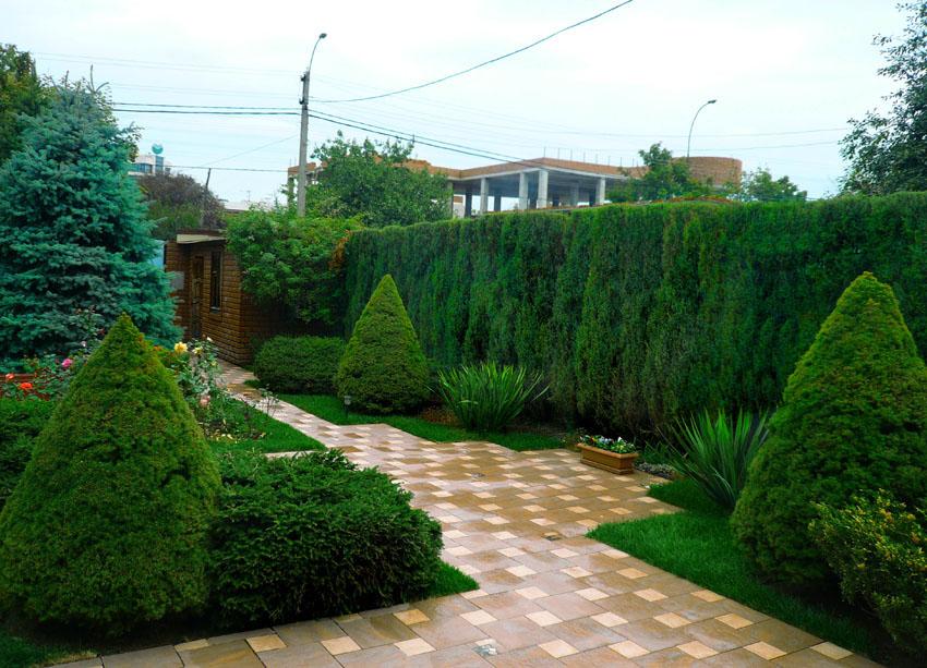 Дизайн ландшафта возле дома своими руками фото фото 374