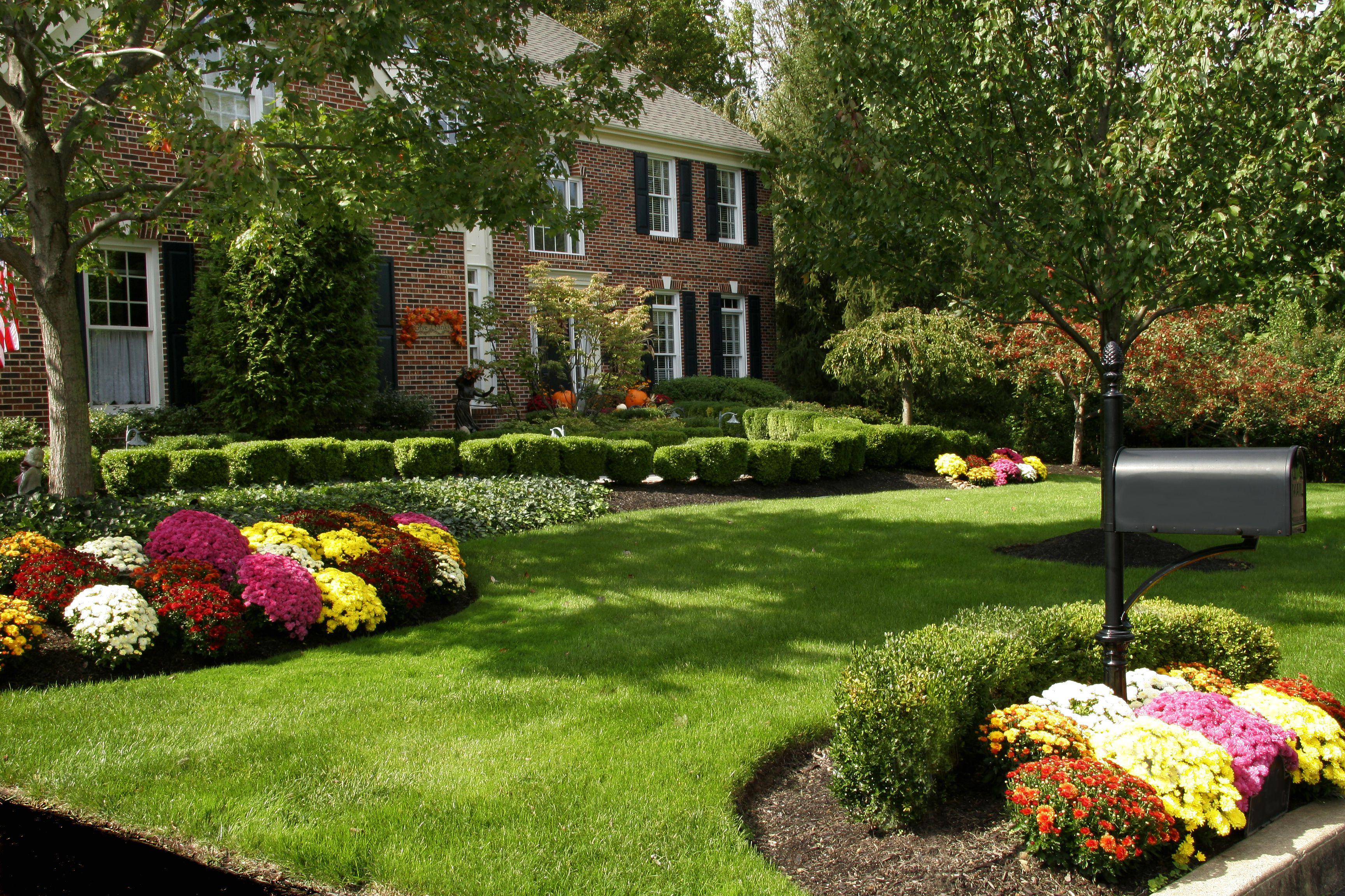 Цветники и клумбы своими руками перед домом фото