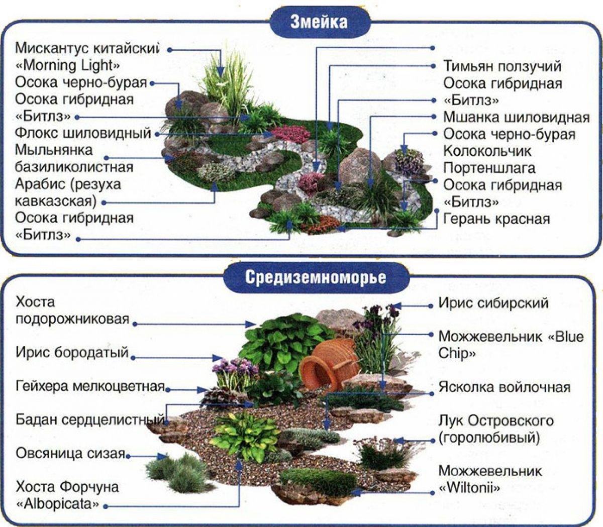 Схема альпийской горки со списком растений